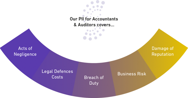 Our Accountants and Auditors Cover Options